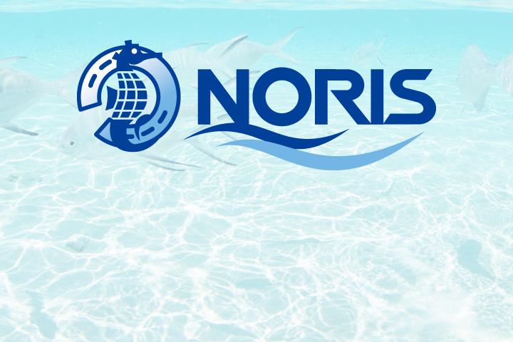 ダイビングとノリスをもっと詳しく